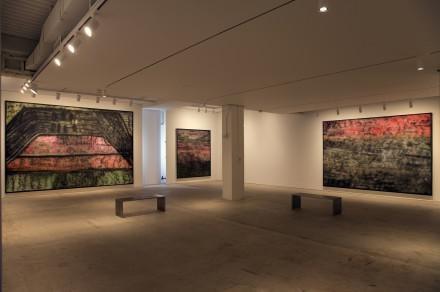 图片为卢比作品的展览现场