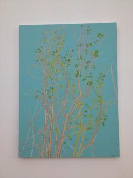 张晖2014年的作品与树木的枝条关系更密切