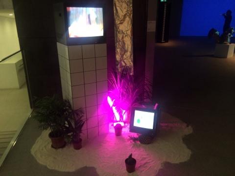 涂朗《数字水晶森林》影像装置 2'59'' 2013