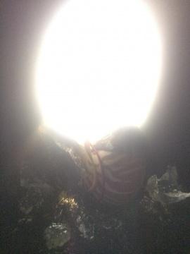 光物质实验室:周戭、王跖、韩柯《孤独的失眠者二》互动装置 2015