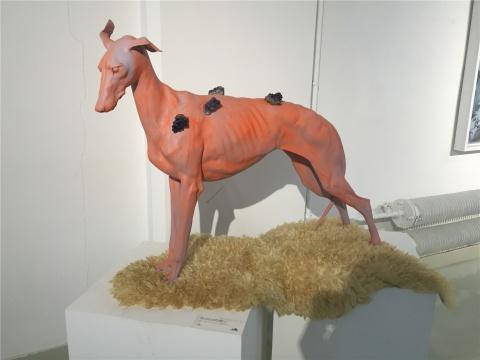 装置作品借动物题材隐喻人与动物在自然