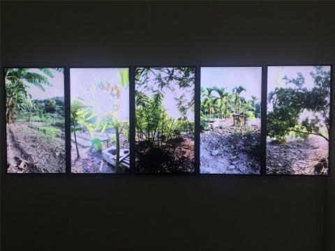 许家维五频录像作品《花东新村》截屏1