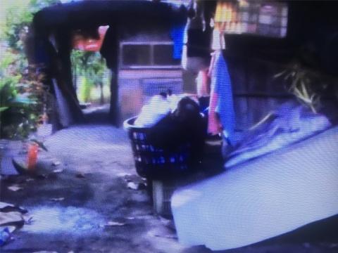 许家维五频录像作品《花东新村》截屏2 村庄破败的样貌