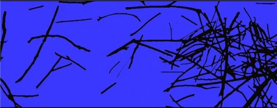 杨国辛2007年影像作品《迟此无喻》截图