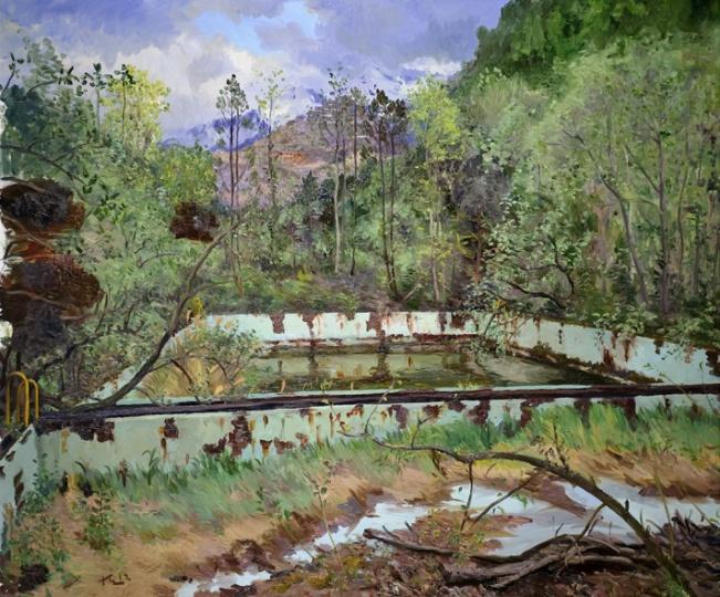 《长树的游泳池》 250x300cm 布面油画 2012