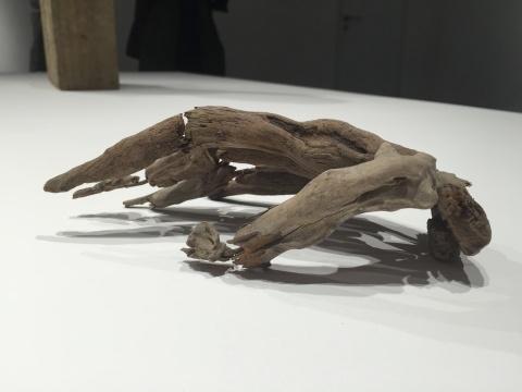 枯枝构成的手骨