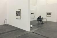 在一场虚拟的博览会里看艺术的发生,田霏宇,迈克尔·艾默格林,英格·德拉塞特