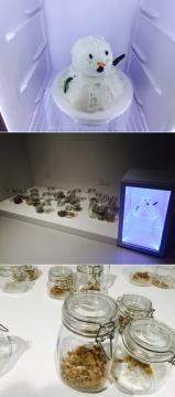 李振华2016年新作《雪人》,材质猪油、冰箱、罐子、展示台