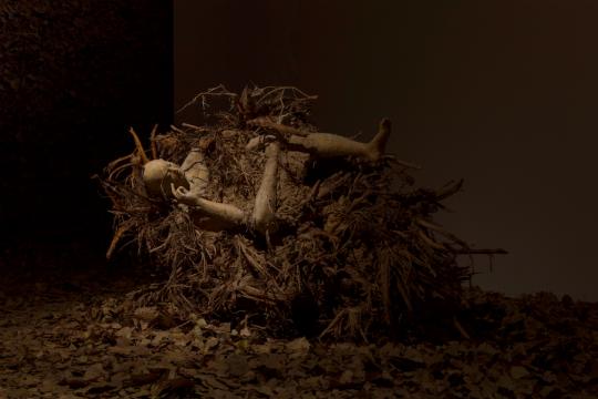 """三个枯树根被""""遗弃""""在枯叶中,走近了看,其间附着着象征爱情的男女依偎"""