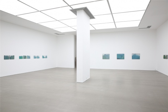 作品均是郭海强在2016年4月至9月之间完成的