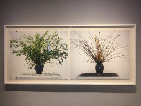 沉淀千年的丝蚕文化如何激发当代艺术家的创作灵感,精湛的丝织技艺