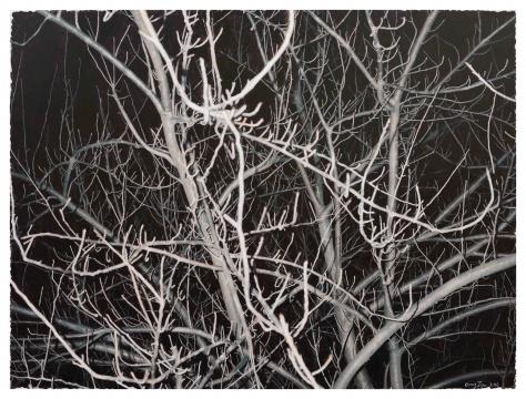 龚剑《看这颗灰色的树 #12》170x230cm布面丙烯2016