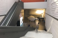 处处是美学 银川当代美术馆非常展览,谢素贞,瓦尔·肖基