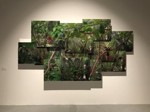 马科斯·查韦斯《无所不在》174×320cm摄影,装裱在丙烯酸和金属结构之上2010