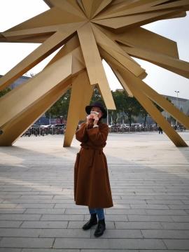 車宣橋联合策展人 青年藏家上海爱琴海购物公园公共艺术项目负责人 红星地产董事