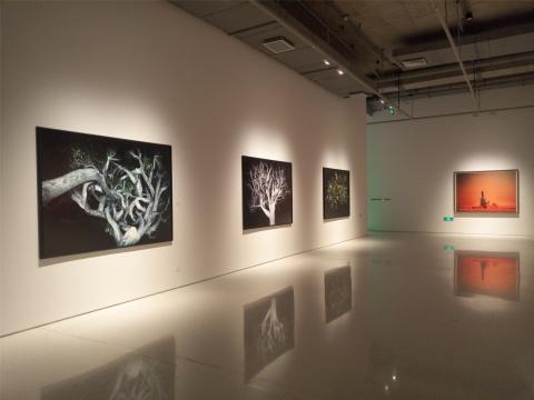 展览现场,范西摄影作品