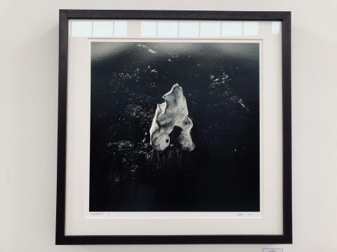 黄锐白云馆 尼科·德拉法耶个展 奇异而神秘审美观的