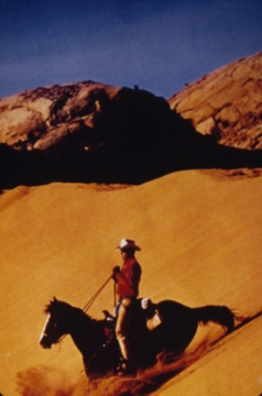 《无题(牛仔)》 152.4×101.6cm 彩色照片 1994  鸣谢艺术家和路易威登基金会,©Richard Prince