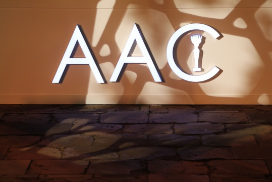 第12届AAC艺术中国颁奖典礼在故宫举办