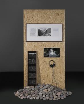 蔡东东,《黑虎》,多媒体影像装置 - 明胶卤化银照片、显示器、石头、木头,170x160x240cm,2018