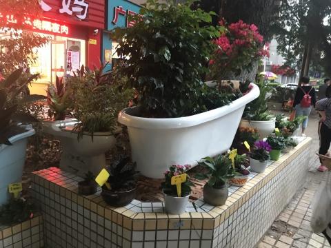 广州居民和竹丝岗社区居民共同创作的《民众花园》