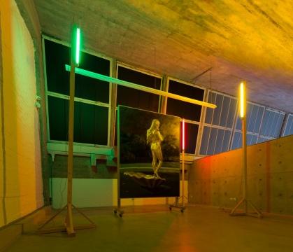 仇晓飞《奥特莱斯的维纳斯》480×470×358cm 布面油画、灯光、布 2013