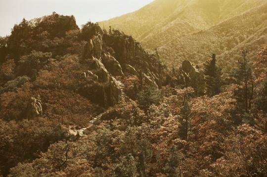白丁基《雪狱山秋景#5》2012