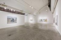 """一个没有脱离低级趣味的人 黄立言最新个展""""一人,一兽,一游仙""""在东京画廊开幕"""
