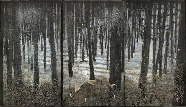 《冬日景观》 331.9×576.1×35.1cm钢筋玻璃框架、布面油彩、感光乳剂、丙烯、虫胶、火灰、断裂的灌木、假牙、蛇皮 2010