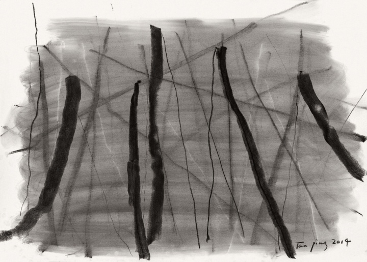 《彳亍》79×109cm 素描 2014