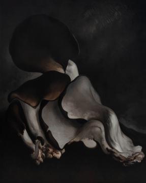 《蘑菇No.16》250×200cm 布上油画 2019