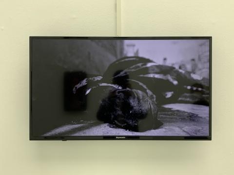 徐渠《斑马》8'32'' 高清黑白录像 2015