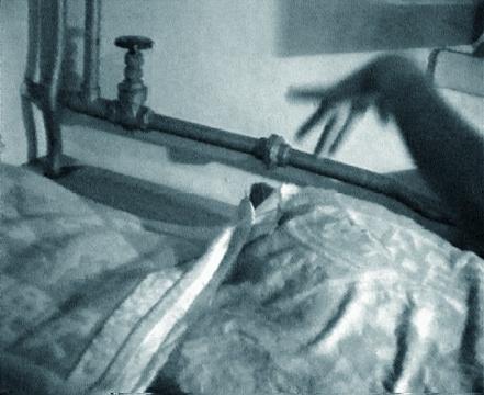 蒋志《飞吧,飞吧》截帧  图片由艺术家提供