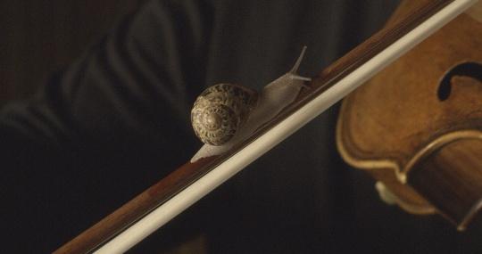 安利·萨拉《当且仅当》(录像静帧)9'47''单声道高清录像,独立4.0环绕声系统,彩色2018© 安利·萨拉,波恩VG图像-艺术图片由玛丽安·古德曼画廊(纽约、巴黎、伦敦)和桑塔画廊(巴黎)提供