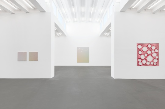 麦勒画廊新展开幕:张雪瑞, 从未在色彩的河流里迷失