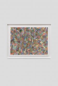 《落苔之六》58×77cm (绘画)65.5 × 84.5 cm (外框) 纸上水彩 2020