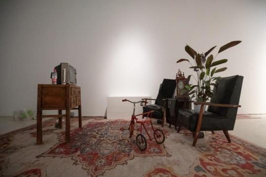 陆飞+雷剑豪 《一起看电视》3x5m 沙发、电视、台灯、植物、显示器、电脑 2020