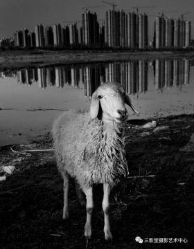 《河边妇人》 2016 ©神思远