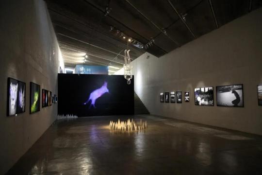三影堂开幕神思远 陈荣辉双个展 用摄影开启关于这个世界的另一种版本