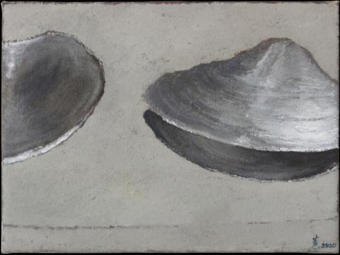《河蚌》30x40cm 布面油画 2020